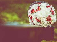A&A nunta foto (15)